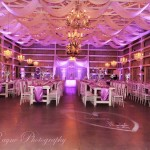 #‎PurpleUpLighting‬ ‪#‎MichaelAnthonyProductions‬ ‪#‎SpectacularDreamLighting‬ ‪#‎AccentLighting‬ ‪#‎TextureLighting‬ ‪#‎JRaynePhotography‬ ‪#‎SaxonManor‬ ‪#‎ShabbyChicBarn‬ ‪#‎weddinguplighting‬ ‪#‎WeddingDJ‬ ‪#‎Tampauplighting‬ ‪#‎TampaDJ‬ ‪#‎Barnwedding‬ #highenedweddinglighting #uplighting