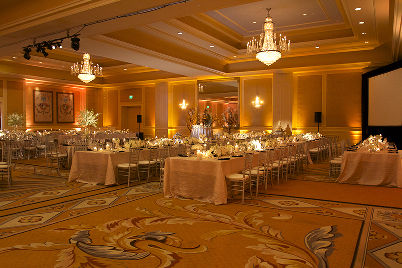 Michael Anthony Productions DJ Services And Uplighting